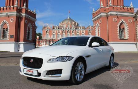 Прокат Jaguar XF NEW на свадьбу