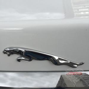 Прокат Jaguar XF на свадьбу 5