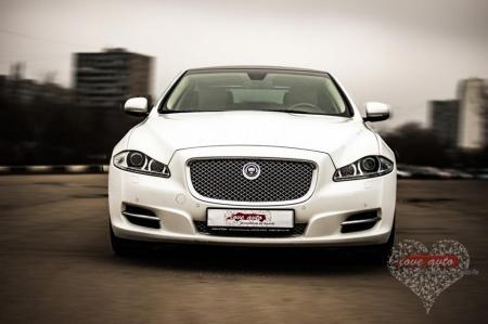 Прокат Jaguar XJ на свадьбу